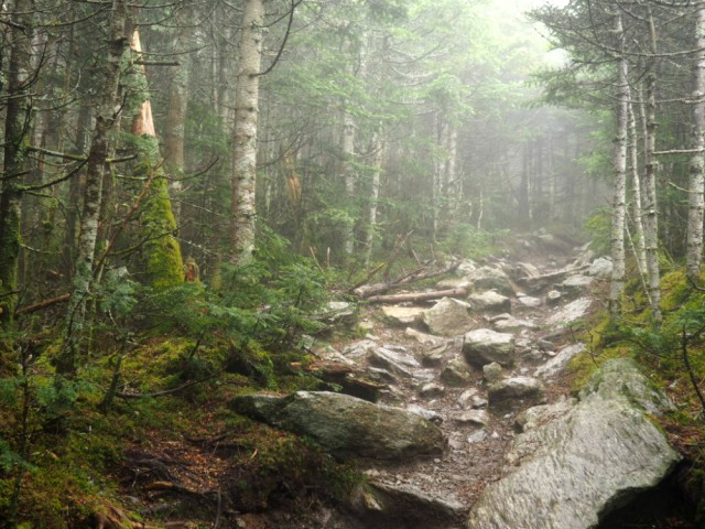 The Long Trail is very rocky over Mount Abraham.